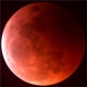 John McCain, The New York Times and The Lunar Eclipse